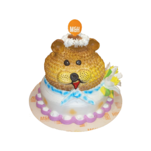 2 Tier Cake | Teddy Bear Cake | 2 Tier Teddy Cake | Buy Kids Cake | M&H Bakery