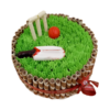 Cricket Cake | Send Online Cricket Pitch Fondant Cake | M&H Bakery